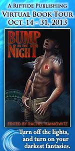 BumpNight_150x300