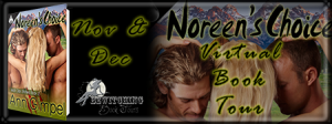 Noreens Choice Banner 450 x 169