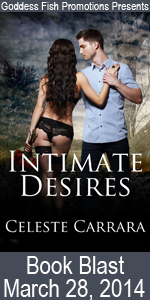 MBB Intimate Desires Book Cover Banner copy