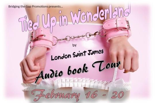 Tied Up In Wonderland banner2