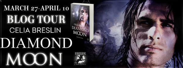Diamond Moon Banner 851 x 225