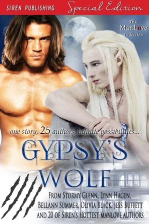 Gypsy_s Wolf - 1800x2700