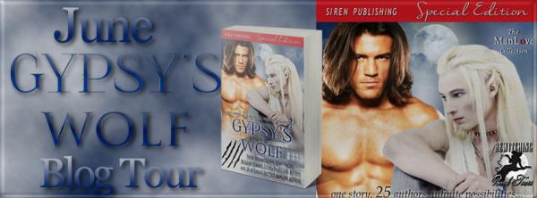 Gypsy's Wolf Banner 851 x 315