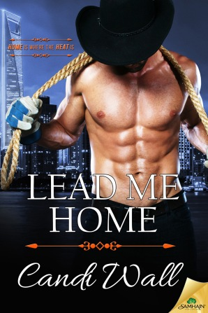 BookCover_LeadMeHome