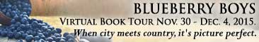 BlueberryBoys_TourBanner